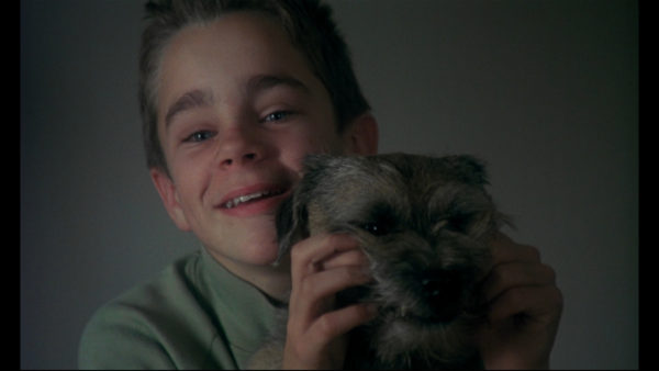 Promotional image for the film My Life As A Dog, watched during August